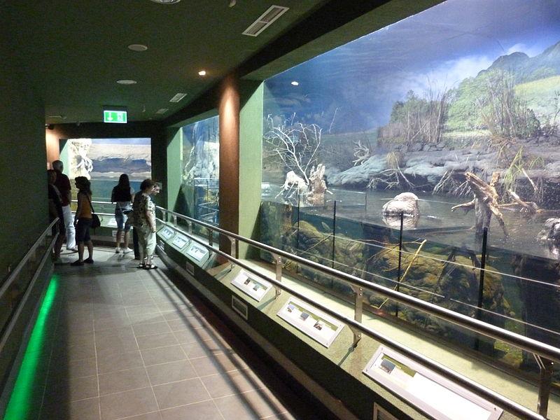 Tisza-tavi ökocentrum poroszló
